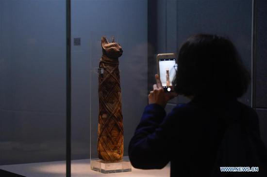浙江西湖画廊古埃及文明展