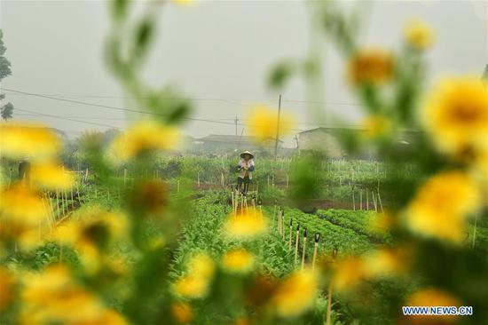Photo taken on March 14, 2019 shows a farmer working in fields at Yiling Village of Shuangqiao Town in Wuming District, south China's Guangxi Zhuang Autonomous Region. (Xinhua/Pan Huaqing)