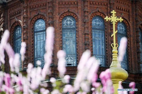Flowers are seen against the backdrop of St. Sophia Cathedral, a former Russian Orthodox church and a perfect example of Neo-Byzantine architectures, in Harbin, capital of northeast China's Heilongjiang Province, April 29, 2016. (Xinhua/Wang Jianwei)