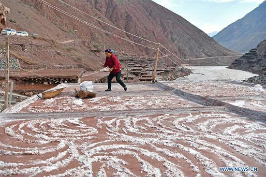 A villager collects salt at a saline field in Mangkam County, southwest China's Tibet Autonomous Region, May 22, 2019. An ancient technique of salt production since Tang Dynasty (618-907) is well-preserved in Mangkam County. Local people follow a salt harvesting method by collecting brines from salt mines and ponds and evaporating them in the sun until crystallization. (Xinhua/Li Xin)