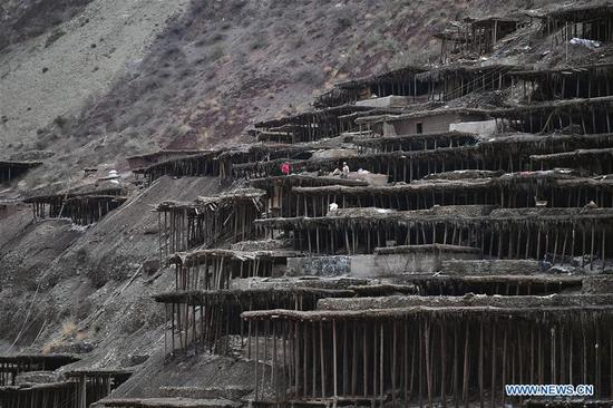 Villagers work in saline fields in Mangkam County, southwest China's Tibet Autonomous Region, May 22, 2019. An ancient technique of salt production since Tang Dynasty (618-907) is well-preserved in Mangkam County. Local people follow a salt harvesting method by collecting brines from salt mines and ponds and evaporating them in the sun until crystallization. (Xinhua/Li Xin)