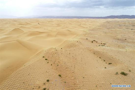 Aerial photo taken on June 12, 2019 shows the desert (L) and the area paved by straw checkerboard sand barriers to prevent and control desertification in Changliushui desert area of Zhongwei City, northwest China's Ningxia Hui Autonomous Region. Located on the southern edge of the Tengger Desert, Zhongwei City has been curbing desertification by making straw checkerboard sand barriers and sowing with grass seeds. Some 1,470,000 mu (about 98,000 hectares) of desert has been processed in Zhongwei by the end of 2018. (Xinhua/Feng Kaihua)