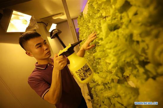 A crew member waters vegetables growing soil-free on the China's spacecraft tracking ship Yuanwang-3, on June 28, 2019. China's spacecraft tracking ship Yuanwang-3 wrapped up its mission of monitoring the 46th satellite of the BeiDou Navigation Satellite System (BDS) and arrived at a port in east China's Jiangsu Province Monday. The tracking ship has traveled more than 30,000 nautical miles in the one-month monitoring mission. China sent the 46th satellite of the BDS into space from the Xichang Satellite Launch Center in Sichuan Province on June 25 and Yuanwang-3 completed the maritime monitoring mission of the satellite launch from the southern Pacific Ocean. Yuanwang-3, China's second-generation space tracking ship, has completed 83 monitoring missions from the sea, including maritime tracking of the Shenzhou spacecraft, the Chang'e lunar probe and BeiDou satellites. (Xinhua/Li Yuze)