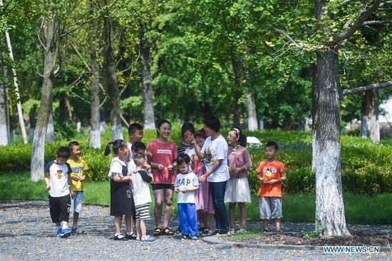 Children search and collect ginkgo leaves which have turned yellow, to mark the upcoming