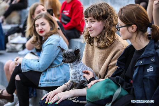 A dog wearing a sweater is seen at the Doggie Party in Moscow, Russia, on Aug. 11, 2019. Doggie Party, a competition for dogs, took place on Sunday in Moscow. (Photo by Maxim Chernavsky/Xinhua)