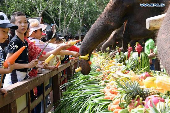 Tourists feed Asian elephants during a public awareness activity on the occasion of World Elephant Day in a tourism area in the Dai Autonomous Prefecture of Xishuangbanna, southwest China's Yunnan Province, Aug. 12, 2019. (Xinhua/Yang Zongyou)