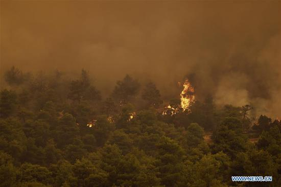 Flames are seen scorching a forest near Makrymalli village on Evia island, Greece, Aug. 13, 2019. Greek fire fighters were battling the largest wildfires of this summer raging in two major fronts near Athens on Tuesday, local authorities said. More than 500 residents have been evacuated from three villages as a precautionary measure and no injured have been reported neither near Thebes city in the mainland, northwest of the capital, nor on Evia island, two hour's drive from Athens, according to the Fire Service. (Photo by Nick Paleologos/Xinhua)