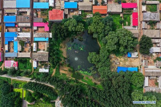 Aerial photo shows a pond after pollution treatment at Yipuxi village of Xiongzhou town in Xiongan New Area, north China's Hebei Province, Aug. 14, 2019. Xiongan New Area started the work to clean up all its polluted ponds in 2018. By now, over 800 polluted ponds have been finished in stages of refuse disposal, wastewater filtration and comprehensive environmental improvement. The main work now has turned to the ecological restoration to those treated ponds, which is expected to be finished by end of 2019. (Xinhua/Xing Guangli)