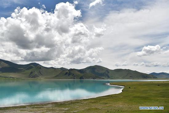 Aerial photo taken on Aug. 31, 2019 shows the scenery of the Yamzbog Yumco Lake in Nagarze County of Shannan, southwest China's Tibet Autonomous Region. (Xinhua/Jigme Dorje)