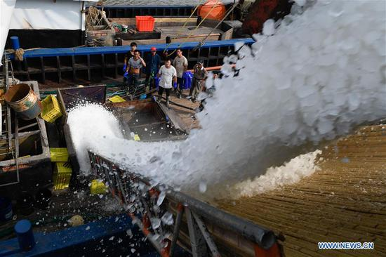 Fishermen load ice cubes into the boat before leaving for fishing at a port of Tongzhao Village in Fenghua District of Ningbo City, east China's Zhejiang Province, Sept. 15, 2019. A celebration marking the launching of a fishing season was held here to pray for good luck. The annual summer fishing ban on the East China Sea will end on Sept. 16. (Xinhua/Huang Zongzhi)