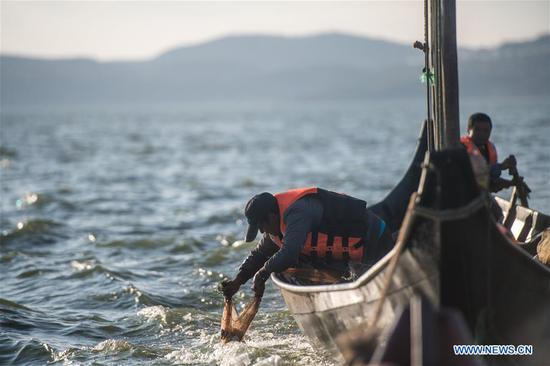 Fishermen catch fish on Dianchi Lake in Kunming, southwest China's Yunnan Province, Oct. 23, 2019. Dianchi Lake officially opened for fishing on Oct. 16. To protect the ecological environment of Dianchi Lake, only whitebaits and small shrimps are allowed to be fished during the 30 day fishing season this year, and any other aquatic products harvest are prohibited. In the late 1980s, Dianchi Lake became murky because of the industrial and domestic waste discharged into it. To protect Dianchi Lake, the central government and Yunnan provincial authorities then implemented a series of measures to restore its lost splendor after decades of severe pollution. After over 30 years of endeavors, water quality of Dianchi Lake has been improved. Water quality in the Dianchi Lake remained to grade IV in the first half of 2019. (Xinhua/Hu Chao)