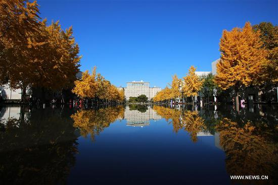 Photo taken on Nov. 7, 2019 shows the main building of Tsinghua University in Beijing, capital of China. (Xinhua/Li Jing)