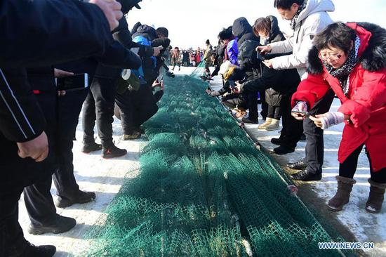 People harvest fish during the 13th winter fishing and traveling festival at Dali Nur in Chifeng, north China's Inner Mongolia Autonomous Region, Jan. 5, 2020. (Photo by Li Zhipeng/Xinhua)