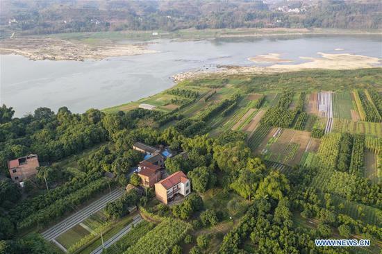 Aerial photo taken on Jan. 7, 2020 shows Zhao Zelun's home on Zhongba Island in Chongqing, southwest China. From Jan. 1, 2020, China began a 10-year fishing ban in key areas of the Yangtze River to protect biodiversity. Zhao, finishing his 30 years' career as fisherman, started a farm hostel business in Zhongba Island. (Xinhua/Liu Chan)