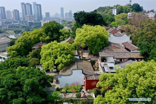 Aerial photo taken on March 22, 2020 shows the spring scenery of Wushan scenic spot in Fuzhou, capital of southeast China's Fujian Province. (Xinhua/Jiang Kehong)
