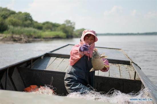 A fisherwoman throws fish into the boat in Bacha Village, Tongjiang City of northeast China's Heilongjiang Province, July 22, 2020. Bacha Village, dominated by people of Hezhe ethnic minority, has led a way of poverty relief through developing economy suited to local conditions. All the 14 registered poor families have shaken off poverty. The per-capita disposable income of villagers has been raised to 22,150 yuan (about 3,168 US dollars) in 2019 from 16,102 yuan (about 2,303 US dollars) in 2015. (Xinhua/Wang Jianwei)