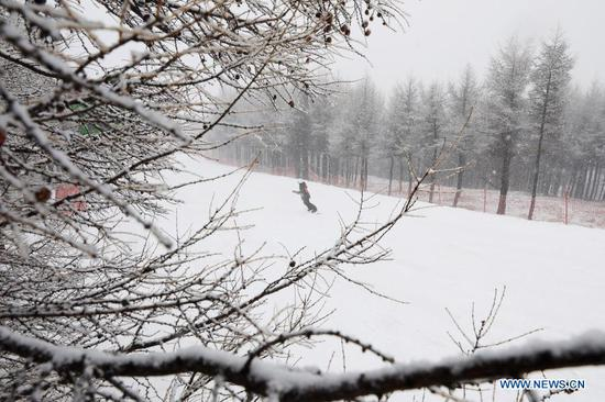 A skier is seen at a ski field during a snowfall in Chongli District of Zhangjiakou City, north China's Hebei Province, Nov. 18, 2020. A snowfall hit Chongli on Wednesday. (Photo by Wu Diansen/Xinhua)