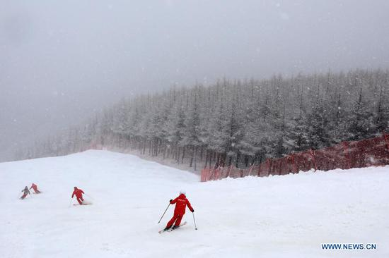 People ski at a ski field during a snowfall in Chongli District of Zhangjiakou City, north China's Hebei Province, Nov. 18, 2020. A snowfall hit Chongli on Wednesday. (Photo by Wu Diansen/Xinhua)