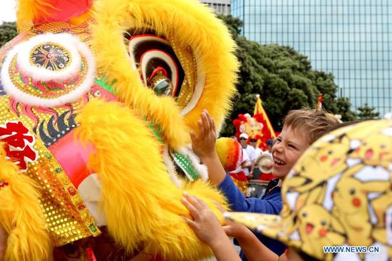 A child tries to touch the props of lion dance amid a Chinese New Year Festival parade in Wellington, capital of New Zealand on Feb. 14, 2021. The year 2021 is the Year of the Ox according to the Chinese zodiac. With Chinese culture and food becoming increasingly popular, people not only in China, but all over the world also take part in the Chinese New Year celebrations. (Photo by Meng Tao/Xinhua)