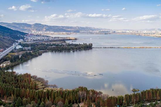Water quality of Dianchi Lake improved in SW China's Yunnan