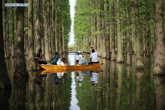 People visit the Luyang Lake wetland park in Yangzhou, east China's Jiangsu Province, May 2, 2019. (Xinhua/Meng Delong)