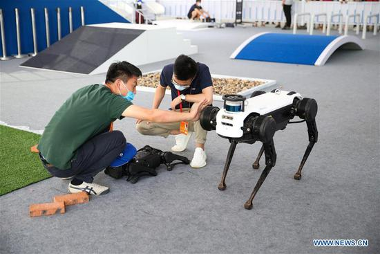 Exhibitors examine and repair two quadruped robots after they clashed with each other during the performance at the service robots exhibition area of the 2020 China International Fair for Trade in Services (CIFTIS) in Beijing, capital of China, Sept. 9, 2020. (Xinhua/Pan Siwei)