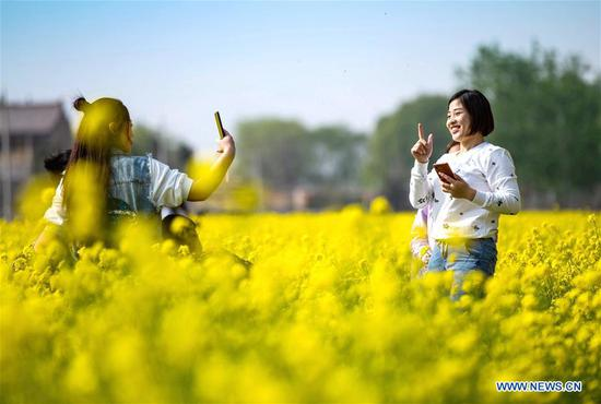 Visitors take photos in a cole flower field in Xishimen Village of Wu'an City, north China's Hebei Province, April 7, 2019. (Xinhua/Wang Xiao)