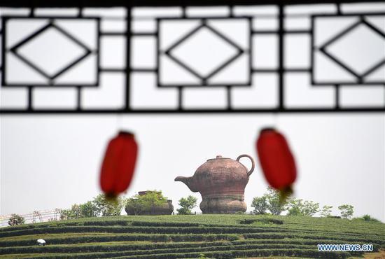Photo taken on April 19, 2019 shows the Wangu tea garden in Mingliang Township of Shanglin County, south China's Guangxi Zhuang Autonomous Region. (Xinhua/Lu Boan)