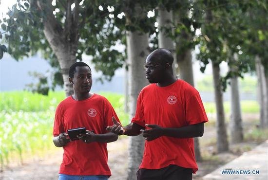 Zigani Saturnin (R) and his schoolmate walk on the way to the experimental field at an agricultural experimental base in Quzhou County, north China's Hebei Province, July 23, 2020. Zigani Saturnin, a student from Burkina Faso, took part in agricultural practice activities at an agricultural experimental base with other 26 foreign students from China Agricultural University during this summer vacation, he hoped that he could apply the agricultural knowledge learned in China to practice while back to his country in the future. (Xinhua/Zhu Xudong)