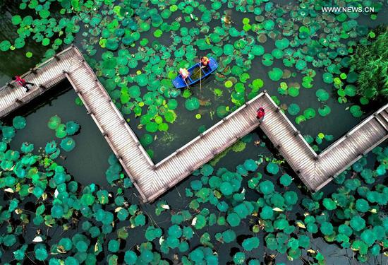 Aerial photo taken on Sept. 21, 2020 shows volunteers clearing the surface of a pond in Xucang Village, Changxing County of east China's Zhejiang Province. Local authorities launched a campaign to clear up the water system in villages to secure a pleasant environment. (Xinhua/Xu Yu)
