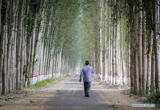 A man walks on a road in a village under Hotan City, northwest China's Xinjiang Uygur Autonomous Region on June 6, 2018. As an important link of the Silk Road Economic Belt, Xinjiang is speeding up the development of transportation and logistics to connect east and west. By the end of 2017, the total length of roads in Xinjiang reached 186,000 km, with 4,578 km of expressways. (Xinhua/Zhao Ge)