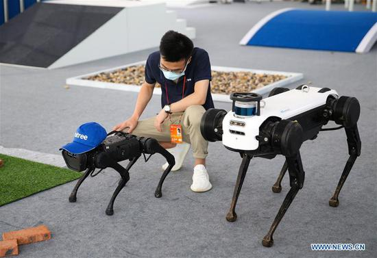 An exhibitor examines two quadruped robots after they clashed with each other during the performance at the service robots exhibition area of the 2020 China International Fair for Trade in Services (CIFTIS) in Beijing, capital of China, Sept. 9, 2020. (Xinhua/Pan Siwei)