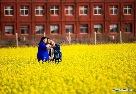 Visitors take selfies in a cole flower field in Xishimen Village of Wu'an City, north China's Hebei Province, April 7, 2019. (Xinhua/Wang Xiao)