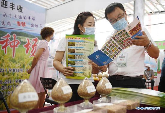 A man watches tomato products during the 7th Ningxia Seeds Expo held at Pingluo County of Shizuishan City, northwest China's Ningxia Hui Autonomous Region, July 27, 2020. (Xinhua/Wang Peng)