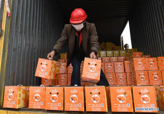 A worker loads fruits onto a container at a railway port in Nanning, south China's Guangxi Zhuang Autonomous Region, Feb. 4, 2020. The second batch of cargo train loaded with vegetables and fruits set out from Nanning to aid Hubei in its fight against novel coronavirus pneumonia. (Xinhua/Lu Boan)