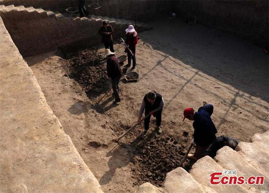 Archaeologists work at a site in Lujiang county, East China's Anhui province. Cultural relics including ancient steamers, and animal bones were unearthed from archaeological sites along a trans-provincial water diversion project in Anhui province. [Photo/China News Service]