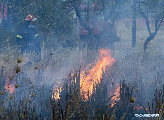 A firefighter is seen on the fire scene in Anavissos, a seaside village at southern Attica, in Athens, Greece, on Sept. 9, 2020. On Wednesday morning a fire broke out at the area of Anavissos, some 45 kilometers south of Athens, burning trees and bushes, threatening houses and buildings while some villages at the area were precautionary evacuated. (Xinhua/Marios Lolos)