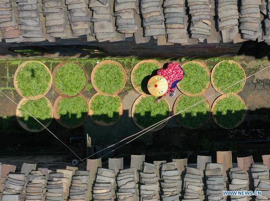 Aerial photo taken on April 7, 2019 shows a villager selecting tea leaves at a tea planting base in Baogai Town of Hengnan County, central China's Hunan Province. Tea planting bases are built in Baogai to provide jobs for local villagers as a method of poverty alleviation in recent years. (Xinhua/Cao Zhengping)