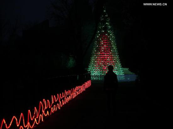 A tree made of 365 recycled Christmas sledges is illuminated during the launch of