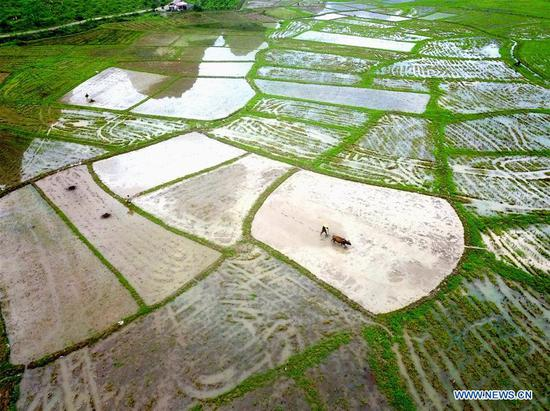 In this aerial photo taken on April 20, 2019, farmers work in a field in Tianxin Village of Sitang Township, Lingui District, Guilin, south China's Guangxi Zhuang Autonomous Region. Guyu, literally meaning