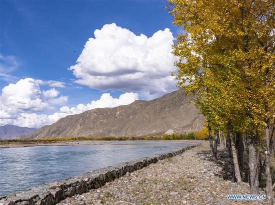 Photo taken on Oct. 6, 2019 shows a view in Paggarxoi Village of Ta'gyai Township of Dagze District in Lhasa, southwest China's Tibet Autonomous Region. (Xinhua/Zhang Rufeng)