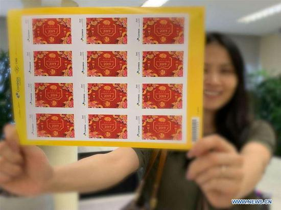 A staff member of Ibrachina shows the Year of the Pig themed stamps in Sao Paulo, Brazil, Feb. 15, 2019. A series of stamps were published by local post office to celebrate the Year of the Pig. (Xinhua)