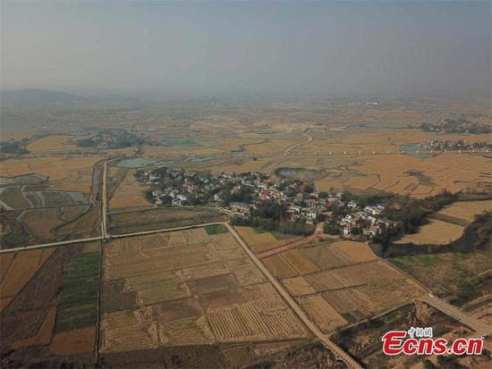 The aerial photo shows an archaeological site along a trans-provincial water diversion project in in Lujiang county, East China's Anhui province. A total of 44 cultural sites are found and put under protection at Anhui section of the water diversion project. [Photo/China News Service]