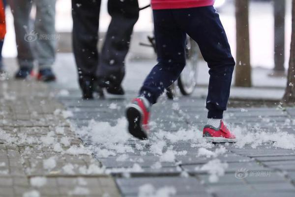 """Snowy"" Beijng under siege by pesky catkins"