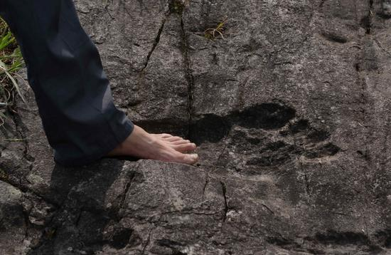 Giant footprint in rock found in Guizhou province