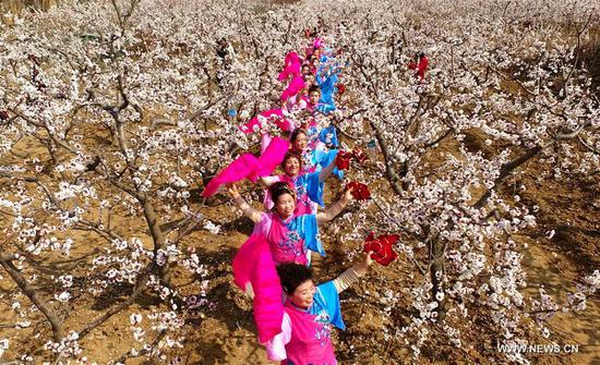 Dancers perform at an apricot farm in Xiaxian County under Yuncheng City, north China's Shanxi Province, March 14, 2017. (Xinhua/Cao Yang)