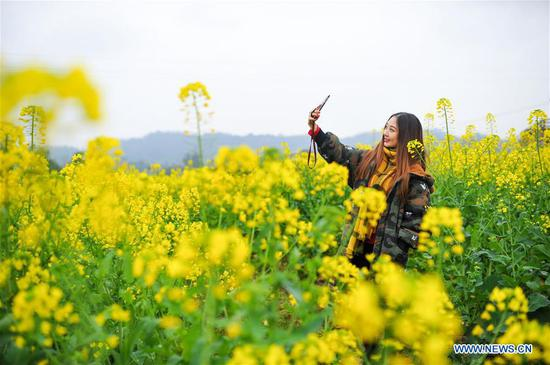 A woman takes selfie with cole flowers at Linfeng Township in Changshou District of Chongqing, southwest China, March 16, 2017. (Xinhua/Li Renzi)