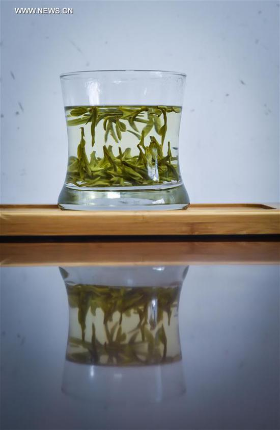 "Photo taken on March 18, 2017 shows a cup of West Lake Longjing tea displayed in a tea plantation in Meijiawu Village of Hangzhou, capital of east China's Zhejiang Province, March 18, 2017. West Lake Longjing Tea planters in Hangzhou are busy with their harvest work ahead of the Qingming Festival to produce the Mingqian (literally ""pre-Qingming"") tea, which are made of the very first tea sprouts in spring and considered to be of high quality. (Xinhua/Xu Yu)"