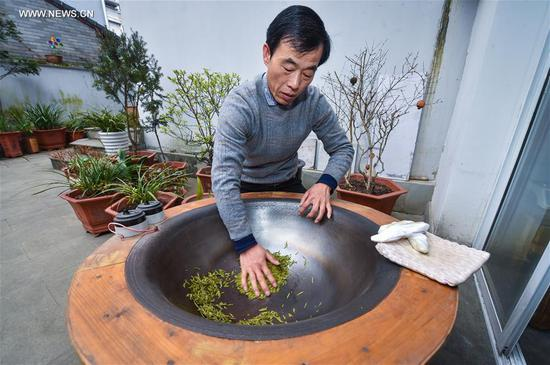 "Tea maker Zheng Wenyou dries fresh West Lake Longjing tea leaves at home in Hangzhou, capital of east China's Zhejiang Province, March 18, 2017. West Lake Longjing Tea planters in Hangzhou are busy with their harvest work ahead of the Qingming Festival to produce the Mingqian (literally ""pre-Qingming"") tea, which are made of the very first tea sprouts in spring and considered to be of high quality. (Xinhua/Xu Yu)"