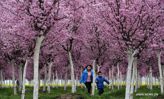 Visitors view the scenery in Tiandang Mountain in Mianxian County, northwest China's Shaanxi Province, March 19, 2017. (Xinhua/Tao Ming)